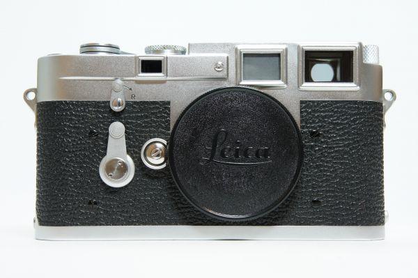 DSC02486.JPG