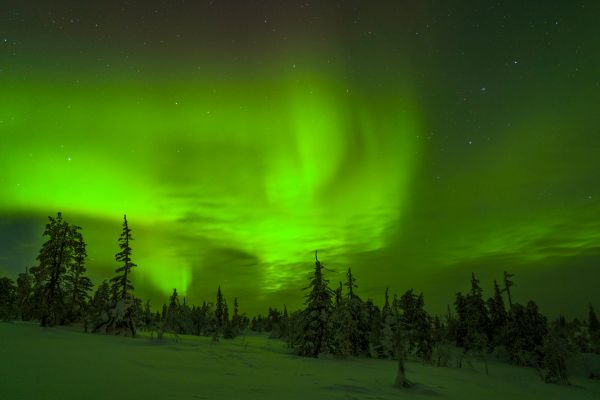 Kussamo-Winter-Netz--8.jpg