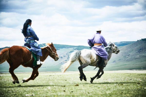 Flying_horses_Mongolia_2018_1146x764.jpg