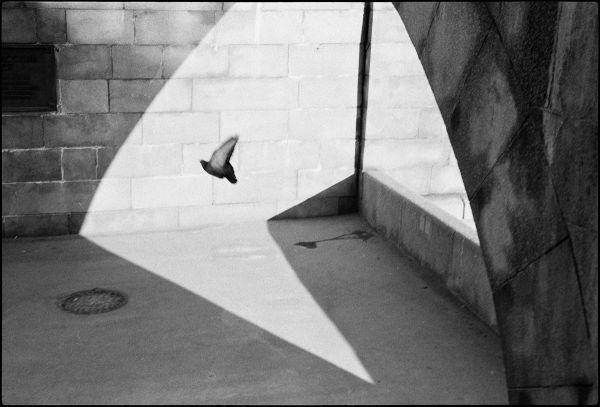 20 мая. Аналоговые камеры Leica: классика и современность