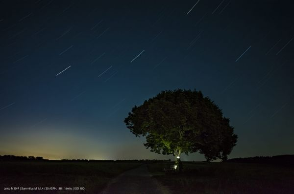 High-Res-M-Experience-STARTRAIL.jpg