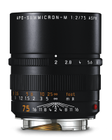 APO-Summicron-M 75mm f/2 ASPH., black anodized